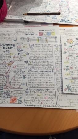 maya_diary